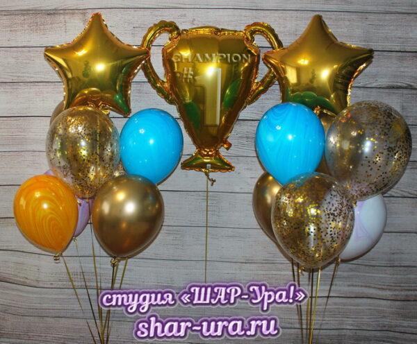 шары для чемпиона